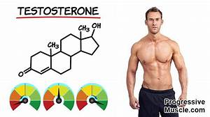 What Are Normal Testosterone Levels For A Man  Full Chart  U0026 Guide