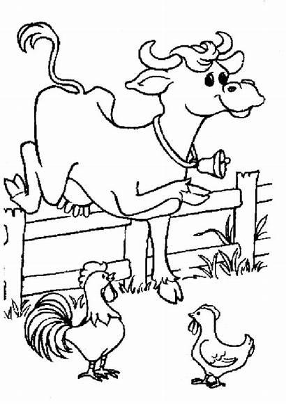 Cour Vache Basse Coloriage Partager