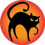 Cat Icon Halloween Icons