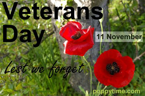 poppies veterans day posters for remembrance day and veterans day
