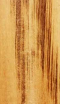 Top 5 Tropical Species for Hardwood Flooring   Baillie