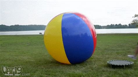 ball find and share on giphy