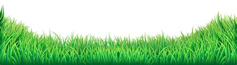 grass clipart free grass png transparent clip image gallery