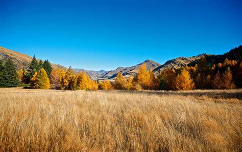 mountains autumn trees grass wallpapers mountains autumn