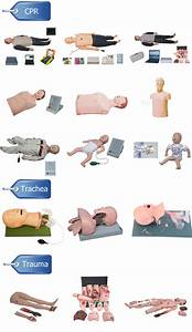 Medical Cpr Mannequin Intubation Training Manikin For Cpr