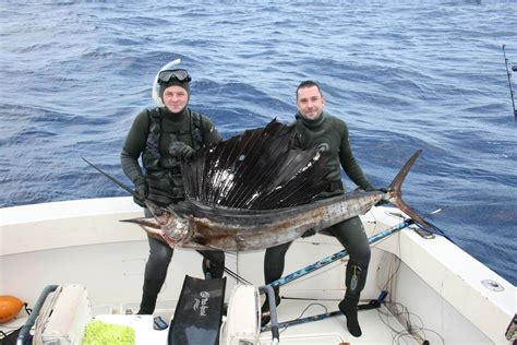 spearfishing trips   world