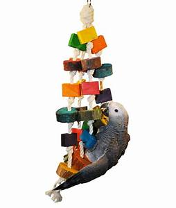 Colored Wood Circles Bird Toys