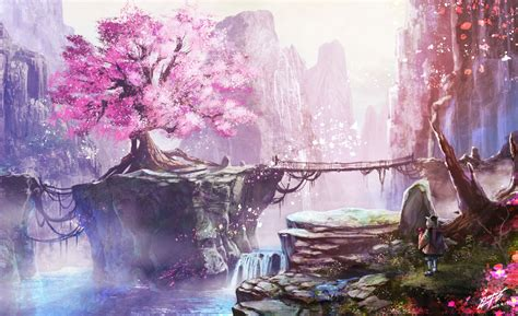cherry blossom tree anime wallpapers top  cherry
