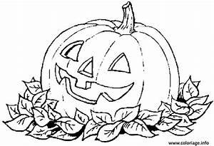 Citrouille Halloween Dessin : coloriage citrouille d halloween avec des feuilles mortes ~ Melissatoandfro.com Idées de Décoration
