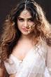 Sony Charishta Hot Navel Hip Photos In Transparent Saree ...