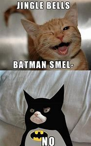 Batman Grumpy Cat Memes Funny