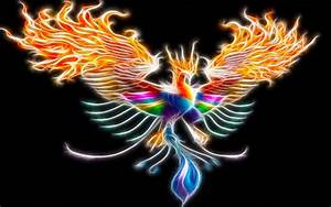 Phoenix Colorful, abstract, beauty, colorful, cool ...