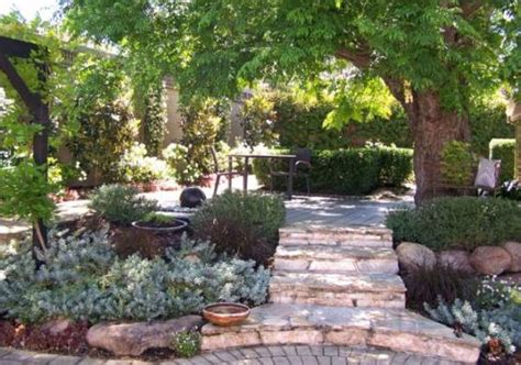Narrow Raised Garden Beds