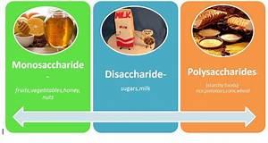 polysaccharide | illuminolist