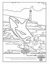 Orca Whale Coloring Killer Pages Printable Getcolorings Getdrawings sketch template