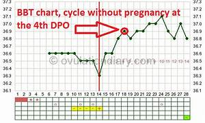 4 Day Past Ovulation  Dpo  In Case Of Pregnancy