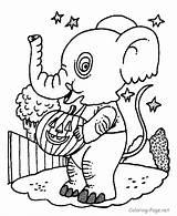 Elephant Coloring Halloween Printable Elephants Ausmalbilder Costum Pumpkin Colouring Konabeun Clipart Kostenlos Library Zum Preschool Atividades Cliparts Amazing Pig Outline sketch template