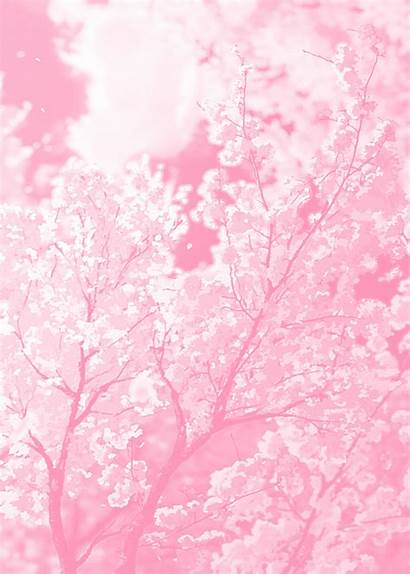 Pink Anime Heart Cherry Edit Hearts Almost