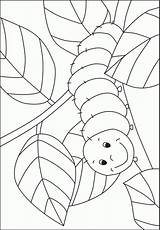 Caterpillar Coloring Pre Template Preschool Bug Hungry Pages Crafts Kindergarten Activities Printable Spring Kigaportal Insect Sheets Colouring Templates Print Butterfly sketch template
