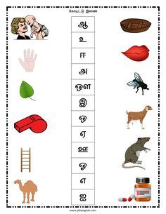 worksheet tamil animals keywords  printable
