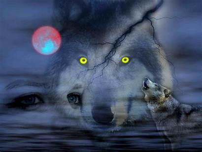 Wolves Night Cool Wallpapers Wolf God Pc