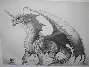 Red Dragon Drawing by BlackMamba12 on DeviantArt