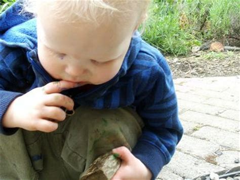 Outdoor Art Fun: Painting Rocks   Make and Takes