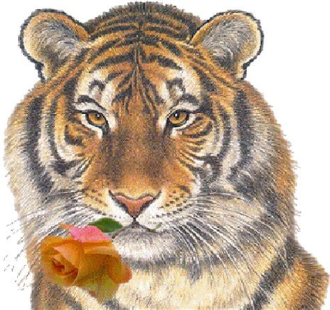 megg tiger loewen