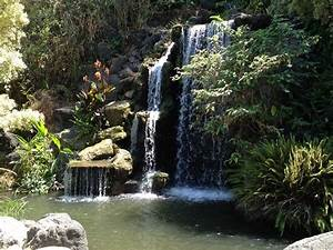 waterfall from beyonce video and many others yelp With los angeles county arboretum and botanic garden