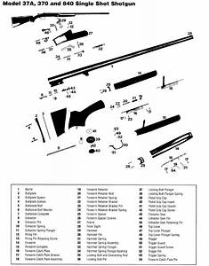 File Winchester 370 Parts Jpg
