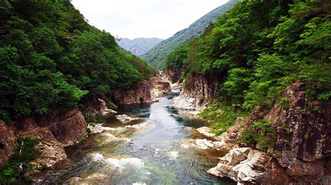 japan nikko national park forest rivers preview