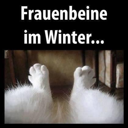 lustige winter bilder frauenbeine im winter bild webfail fail bilder und fail
