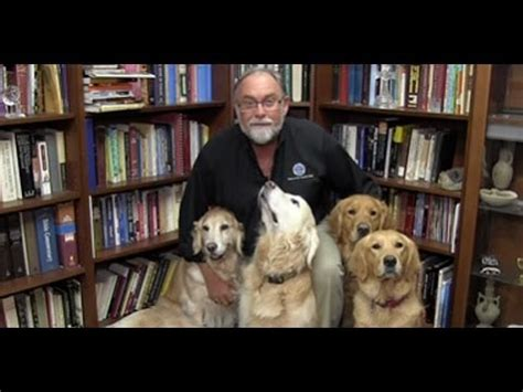 k 9 comfort dogs an important message from lcc president tim