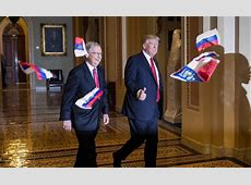 Protester arrested after throwing Russian flags at Trump