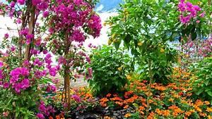 Flower Garden Wallpaper Free Download Beautiful The ...
