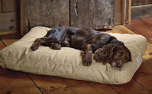 Indestructible dog beds top 5 beds and reviews for Orvis no chew dog bed