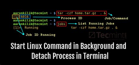 Linux Background Process How To Start Linux Command In Background And Detach