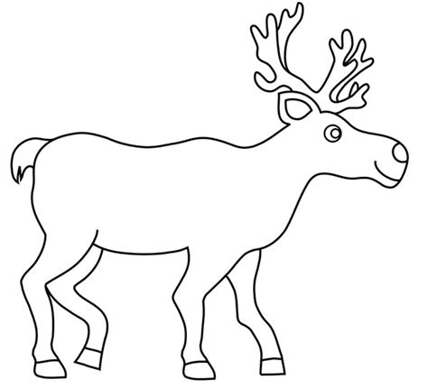 Reindeer Template by 65 Best Decoration Templates Exles Free