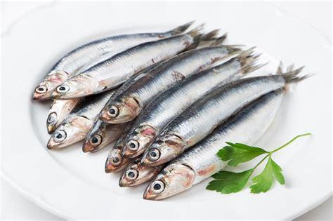 comment cuisiner des sardines comment bien cuisiner les anchois