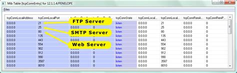 tcp port scanner  supervision