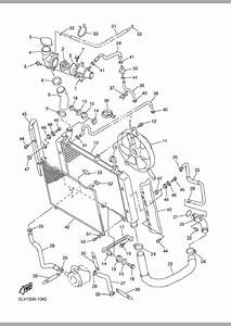 Ford Star Cooling System Diagram