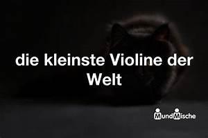 Kleinste Sauna Der Welt : die kleinste violine der welt bedeutung und mundmische de ~ Whattoseeinmadrid.com Haus und Dekorationen