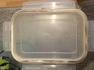Schimmel Aus Silikon Entfernen : schimmel in gummidichtung von lunchbox entfernen gummi ~ A.2002-acura-tl-radio.info Haus und Dekorationen