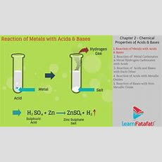 Acid Bases And Salts Class 10 Science Cbse  Chemical Properties Of Acids And Bases Youtube