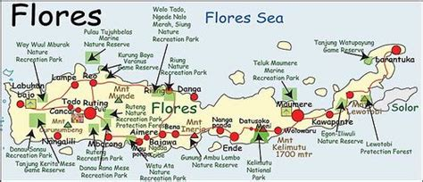flores islandindonesia map indonesia
