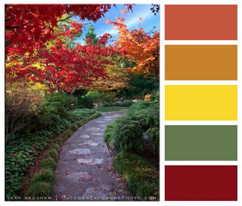 october color october color palette of the month suncrest homes