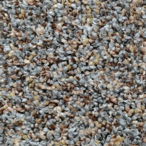 Multi Color Carpet  Carpet Vidalondon