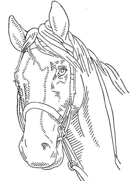 horse embroidery pattern embroidery pinterest