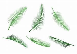 Palm Leaf Vectors - Download Free Vector Art, Stock ...