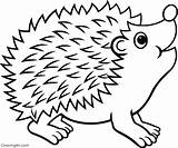 Hedgehog Coloring Pages Simple sketch template
